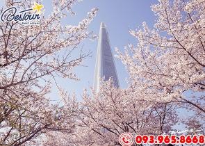 Tour Du Lịch Hàn Quốc 5 Ngày 4 Đêm Mùa Hoa Anh Đào - Khách sạn 5*